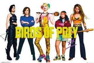 Ptaki Nocy