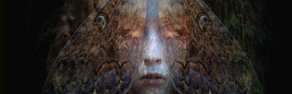 Śpiące królewny - AMC szykuje serial na podstawie książki Stephena i Owena Kingów
