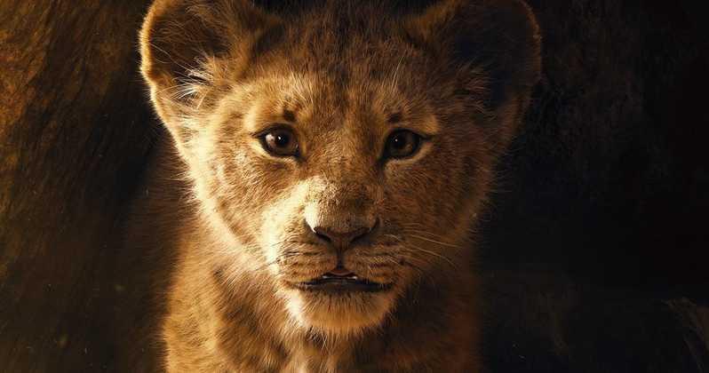 Król Lew - bohaterowie na międzynarodowym plakacie filmu Disneya