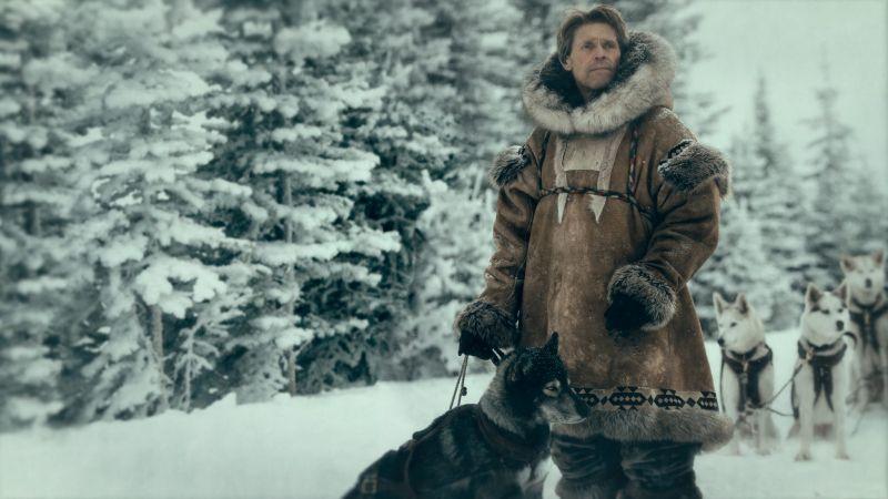 Togo - zwiastun filmu Disney+. Willem Dafoe poprowadzi psi zaprzęg