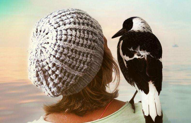 Penguin Bloom: ukazała się wzruszająca opowieść o ptaku, który ocalił rodzinę