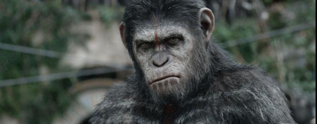 """Co w kontynuacji filmu """"Ewolucja planety małp""""?"""