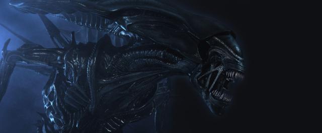 "Steam zamyka drzwi dla ""Aliens: Colonial Marines"" i ""Alien vs Predator"""