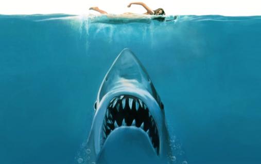 Rekin-zabójca – przegląd filmów
