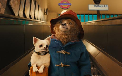 Hugh Grant w obsadzie filmu Paddington 2