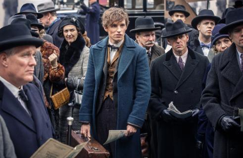 Co Newt Scamander robił w Hogwarcie za czasów Harry'ego Pottera?