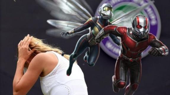 Irytują Was latające mrówki? Uczestników Wimbledonu tak – Marvel przeprasza