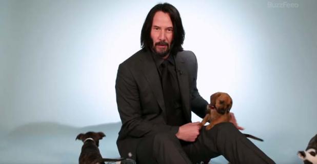 Keanu Reeves - najzabawniejsze memy na temat aktora [GALERIA]