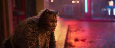 Koty - fanowski zwiastun filmu w stylu kina grozy