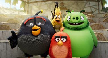 Angry Birds: Summer Madness - Netflix zamawia nowy serial animowany