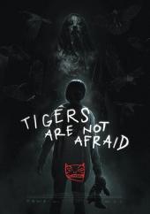 Tygrysy się nie boją