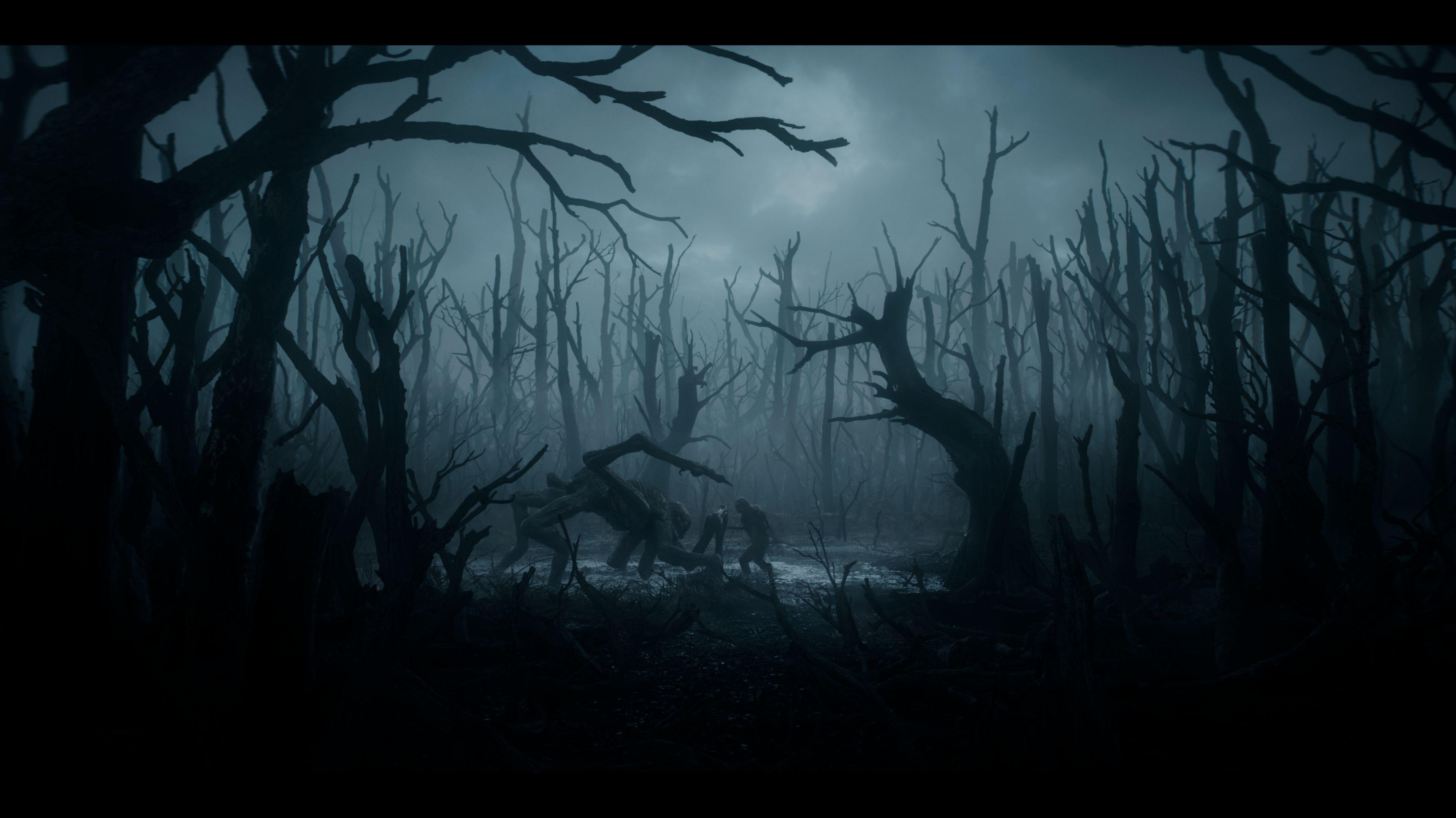 Wiedźmin - świat, magia i zabójcy potworów. Zasady i szczegóły, które trzeba znać