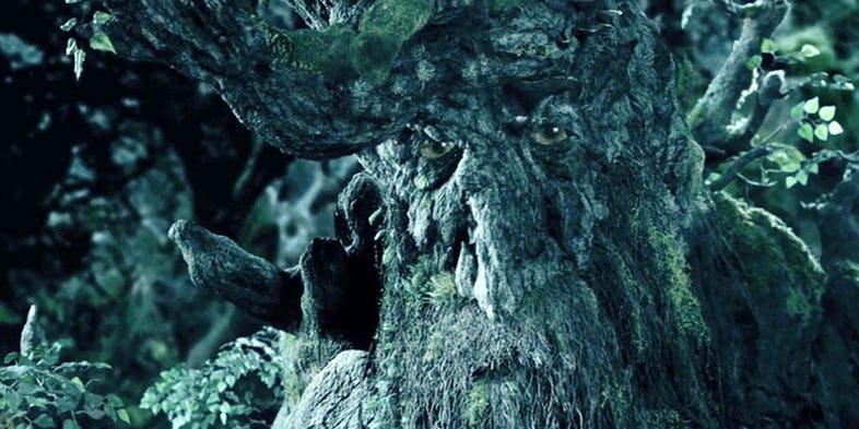 20. Drzewiec - najstarsza osoba w Śródziemiu, władca Entów